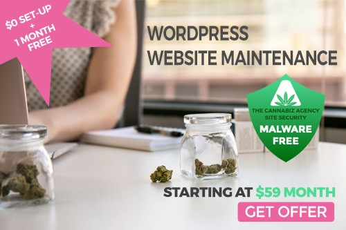 WordPress maintenance deal